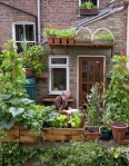 Tufnell Park BalconyOwner: Mark Risdill-SmithThe Edible Balcony, 7/7/10