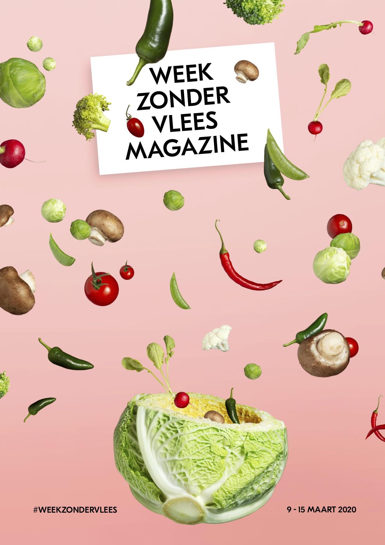 nwzv_magazine_2020_Download_DEFHR-gesleept-kopie